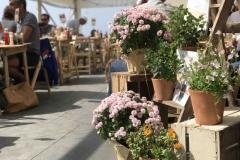 Hive Beach Cafe Summer