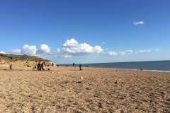 Hive Beach Burton Bradstock